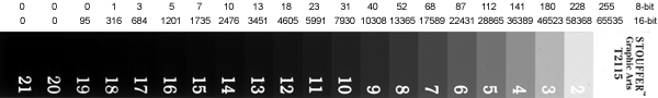 Figure 2. The numbers along the top represent average grayscale values for each step on the scale, expressed at 8-bit values (0-255) or 16-bit values (0-65535).
